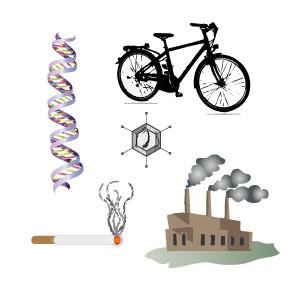 Risicofactoren zijn genetische aanleg (DNA) en leefstijl- en omgevingsfactoren