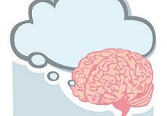 Onderzoek naar gedragsveranderingen biedt nieuw inzicht in PSMA en PLS