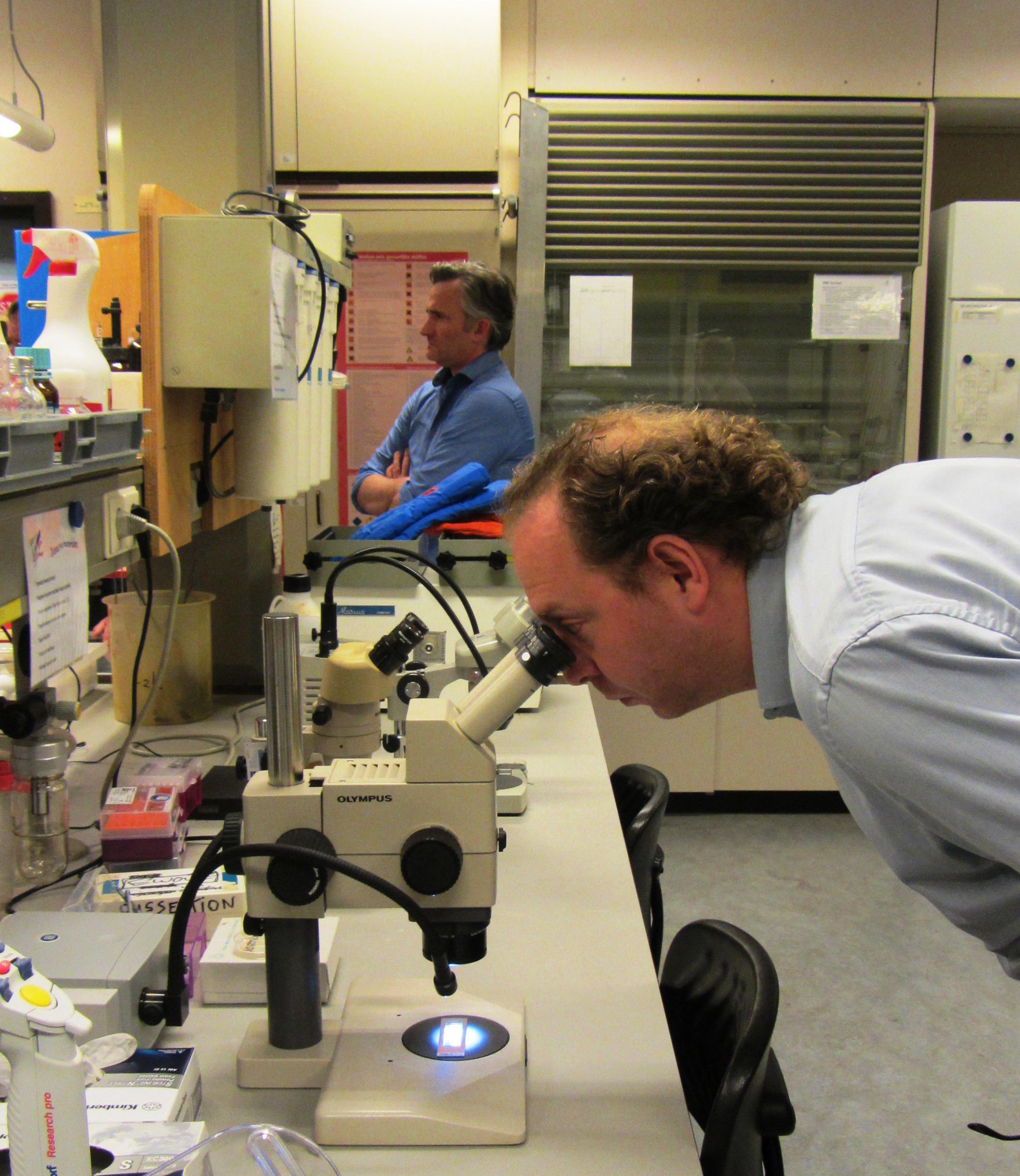 BAs achter microscoop